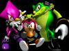 Team Chaotix.png